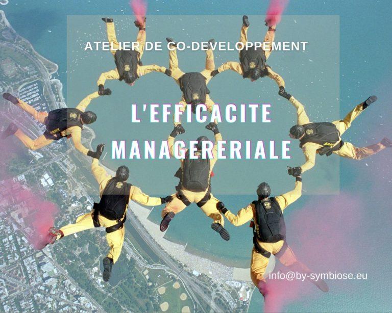 EFFICACITE MANAGERIALE